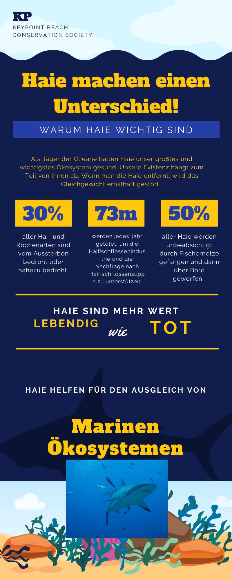 hai infografik